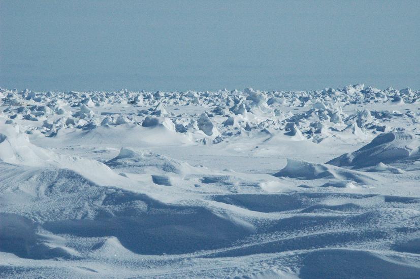 Hielo ártico marino y cúmulos de nieve en Bering Strait, en marzo de 2009. © F.K. Wiese